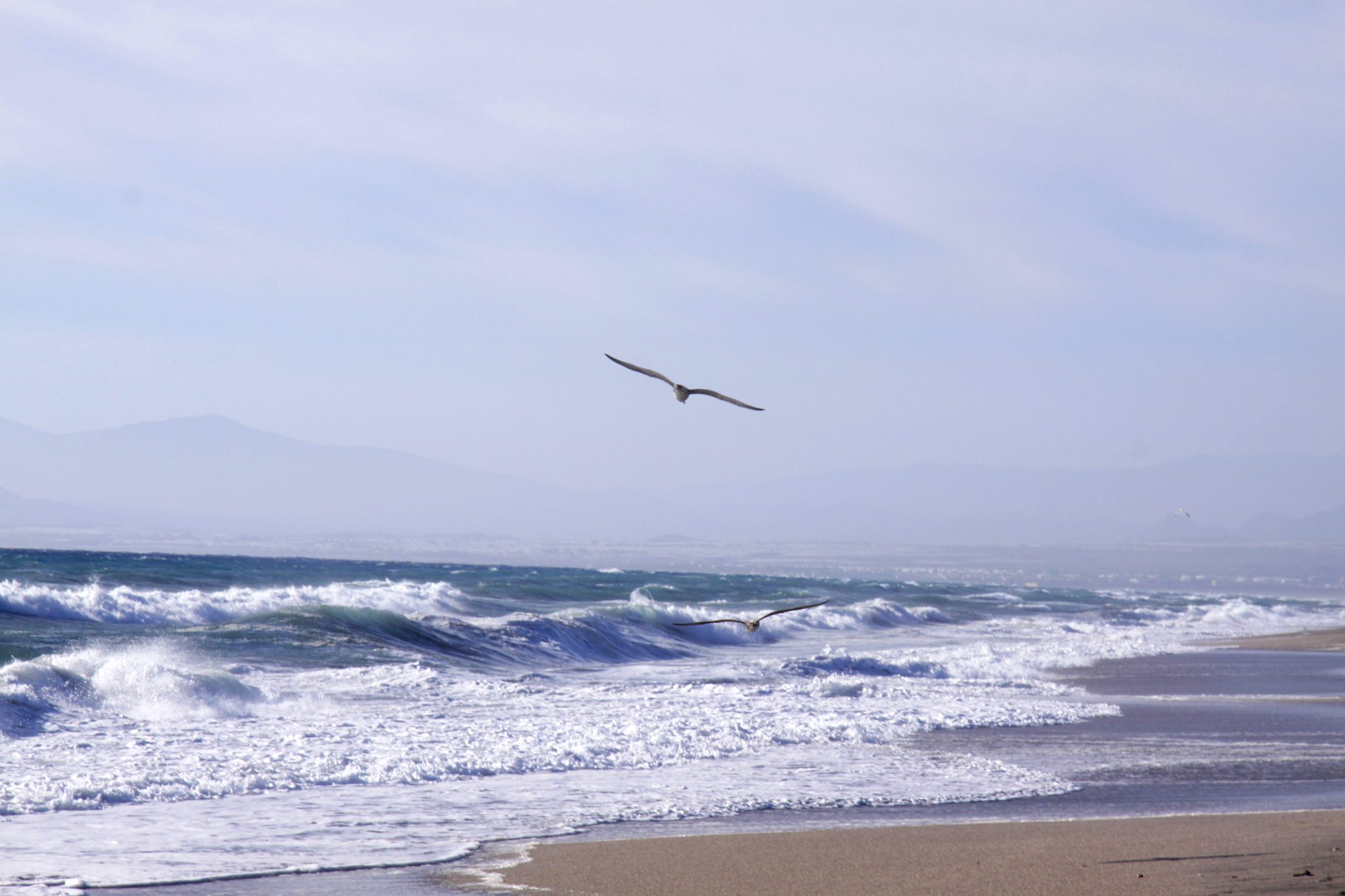 El océano interior.