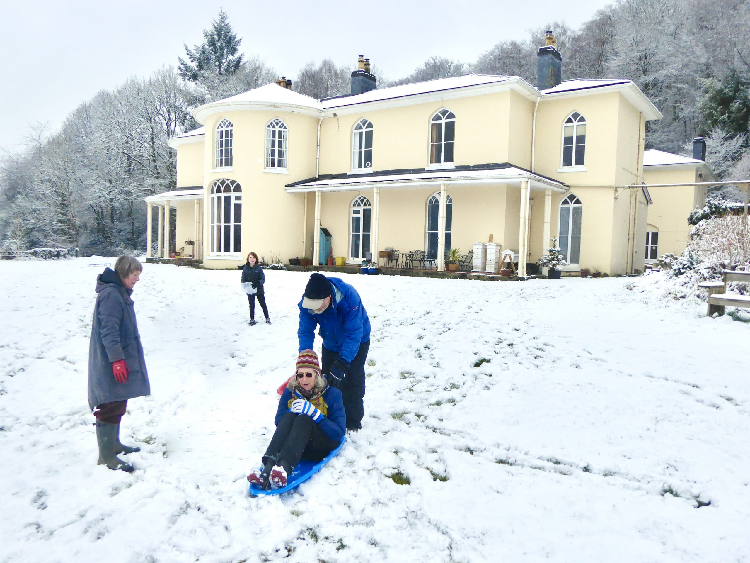 Sledging on the lawn in the snow