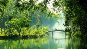 Hutan Bambu Andeman Malang Waduk Andeman Malang Dolandolen - Dolan Dolen