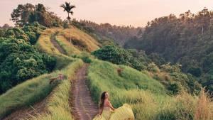 Campuhan Ridge Walk, Gianyar, Bali - Dolandolen