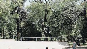 Green Skate Park TMII, Green Skate Park TMII Jakarta, Jakarta, Dolan Dolen, Dolaners