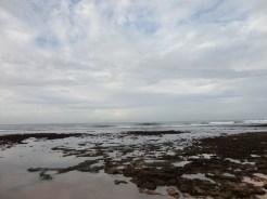 pantai sepanjang (161)