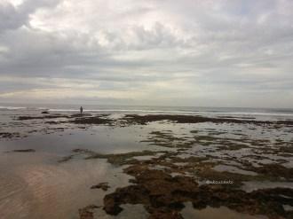pantai sepanjang (164)