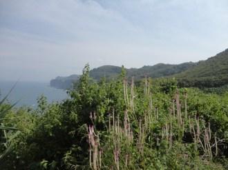 laut bekah gunungkidul (146)