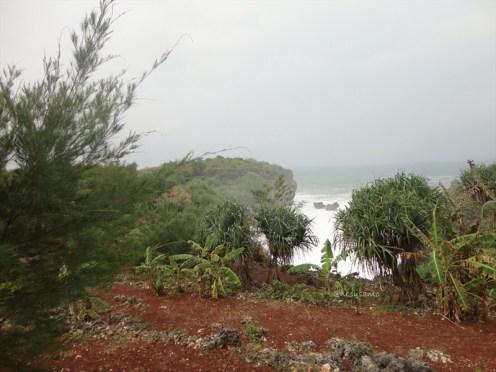 pelabuhan pantai gesing gunungkidul (163)
