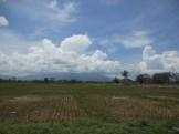 lost in sumatera part 2 bandar lampung - pesisir barat (50)