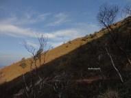 kawah gunung ijen banyuwangi (78)