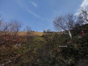 kawah gunung ijen banyuwangi (86)