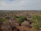 taman nasional baluran banyuwangi, afrika-nya pulau jawa (74)