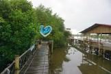 wisata hutan mangrove pantai jembatan api api kulonprogo yogyakarta (19)