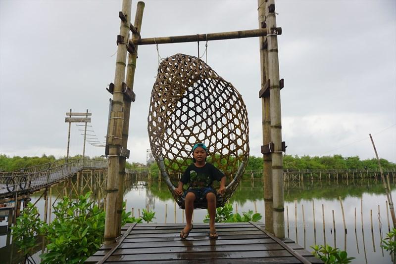 wisata hutan mangrove pantai jembatan api api kulonprogo yogyakarta (22)