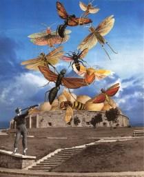 The Swarm (collab #11 between Sabine Remy & Lynn Skordal)