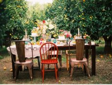 Outdoor table setting2