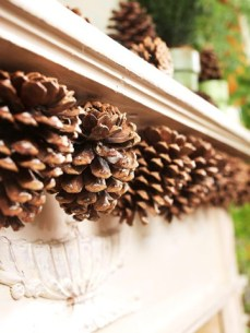 http://www.bhg.com/decorating/seasonal/fall/decorate-with-pinecones/#page=19