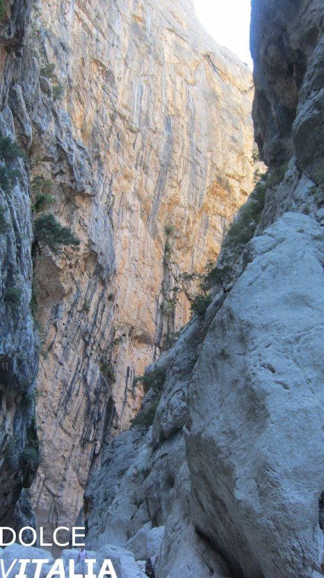 Impressive wall of Gorropu canyon In its highest and narrowest point