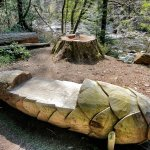 A Pine Seat! Tyn y Groes, Coed y Brenin