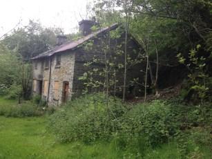 Fron Cottage