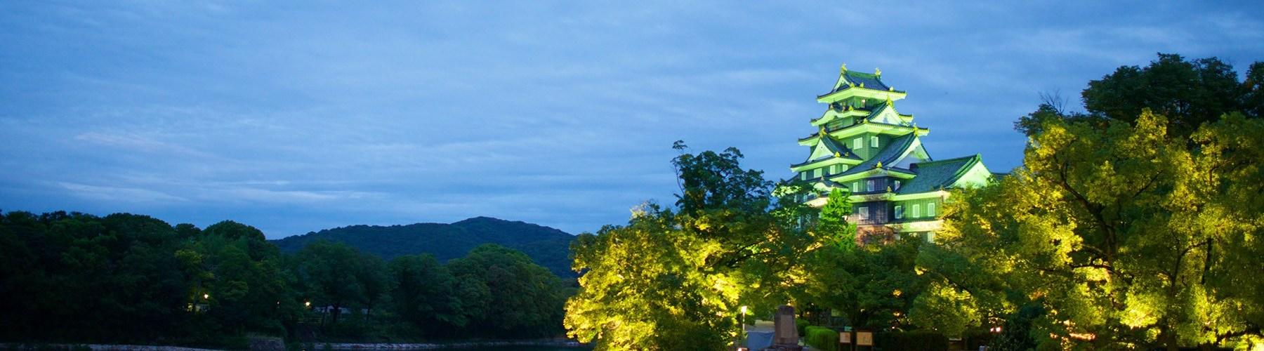 岡山城夜景
