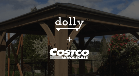 Fast Furniture Amp Retail Delivery Dolly