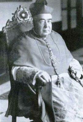 D. Antonio García y García, Obispo de Tuy