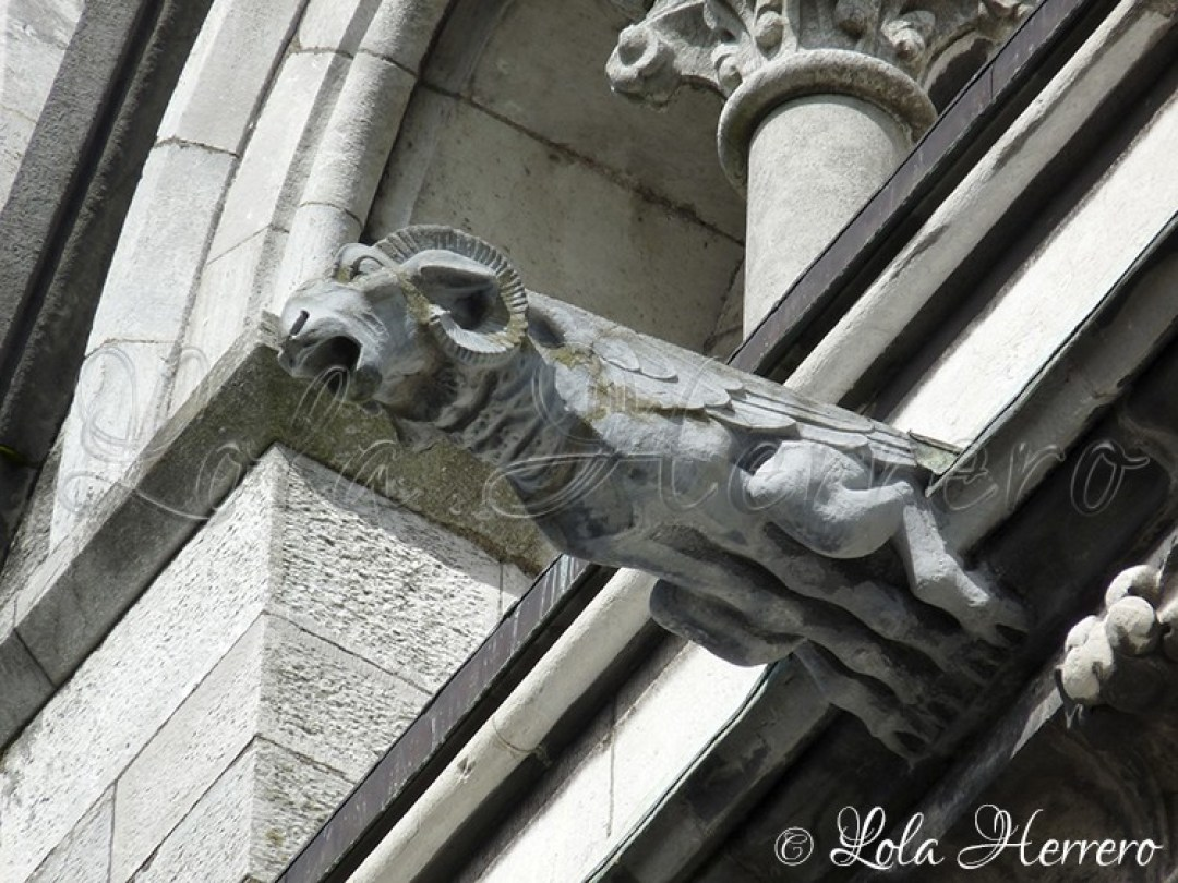Gárgola Catedral Cork (Irlanda) 151