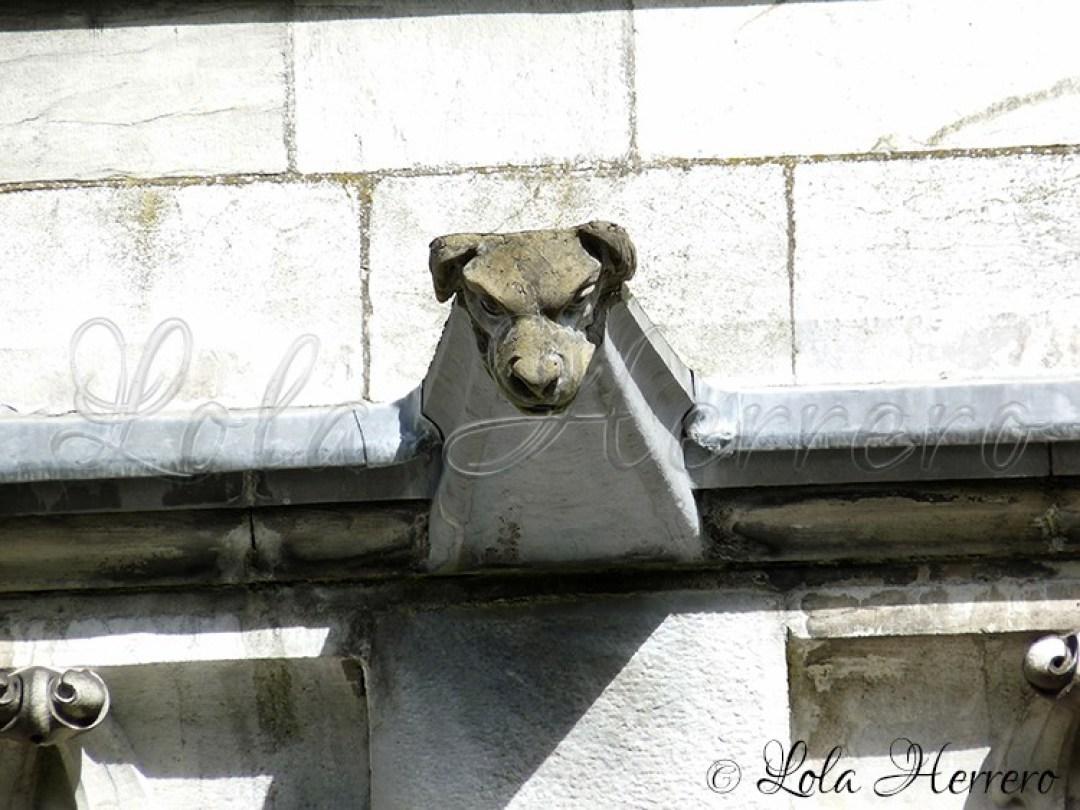 Gárgola Catedral Cork (Irlanda) 153