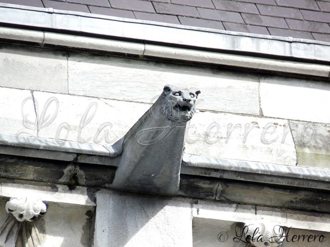 Gárgola Catedral Cork (Irlanda) 154