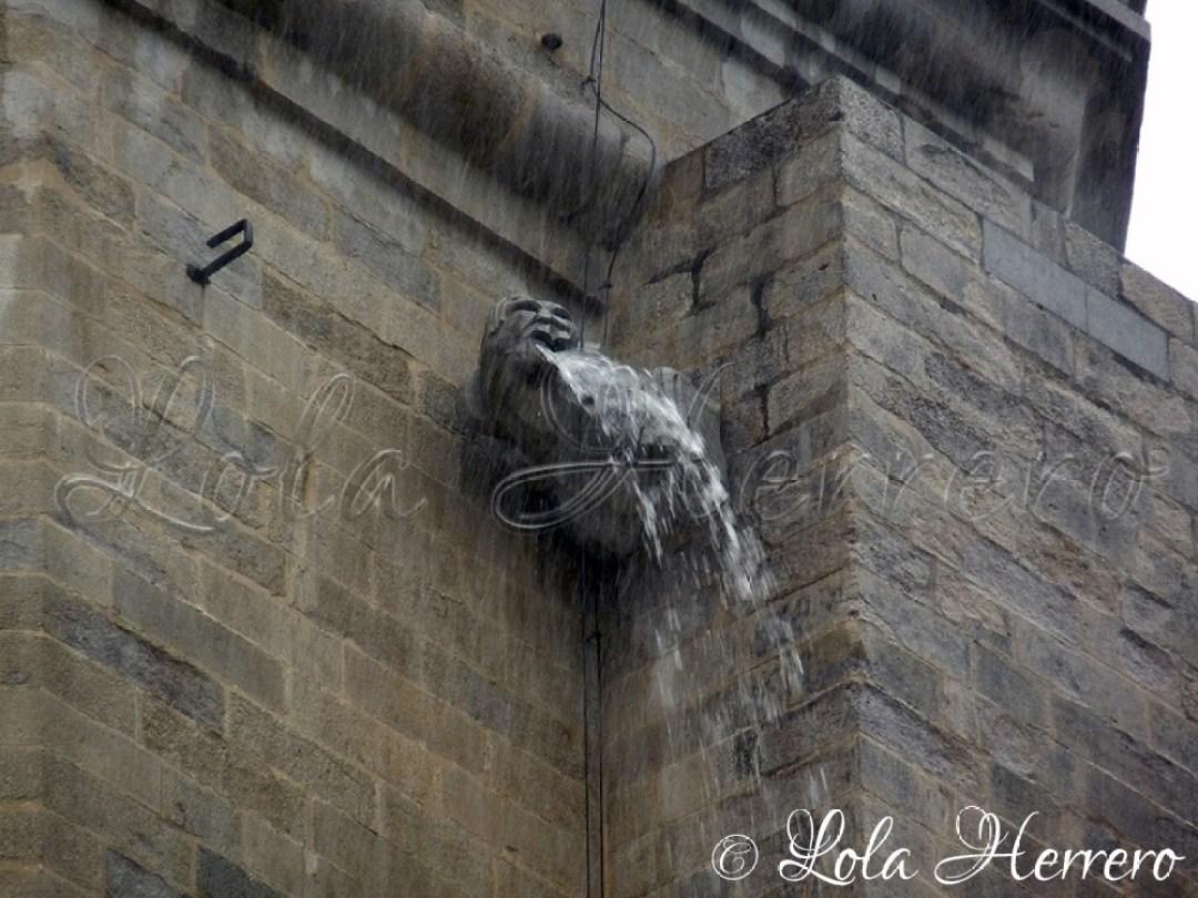 Gárgola Catedral Girona 49