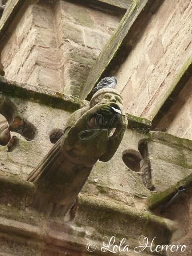 Gárgola de la Catedral de Rodez (Francia)