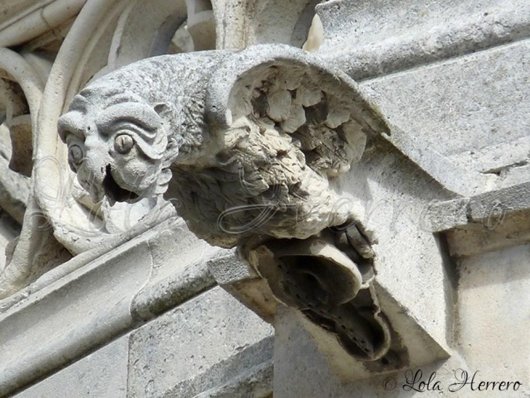 Gárgola Catedral Palencia (272)