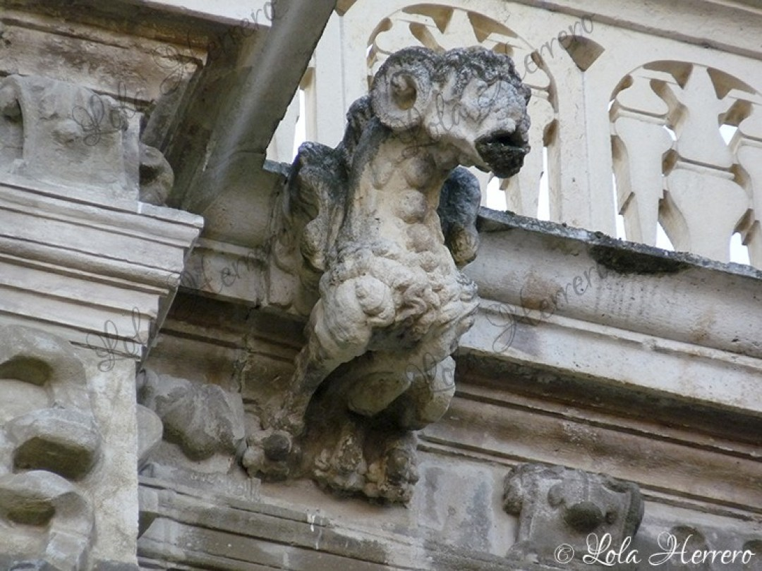 Gárgola Catedral Astorga (366)