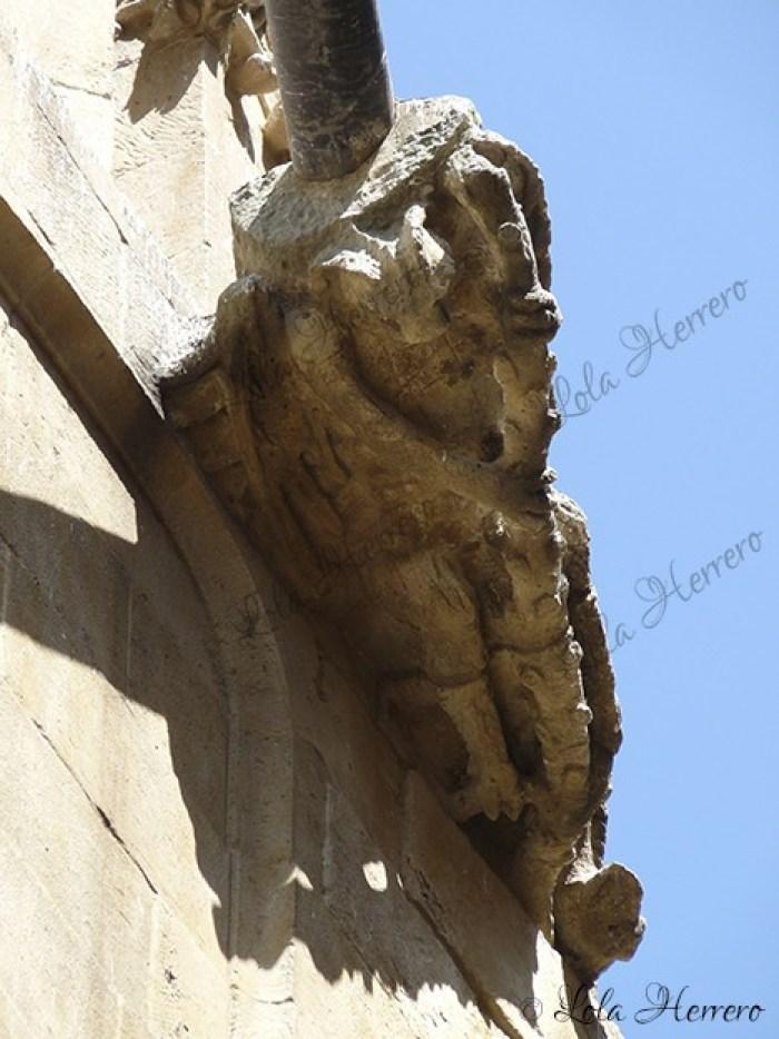 Gárgola Catedral Salamanca (343)