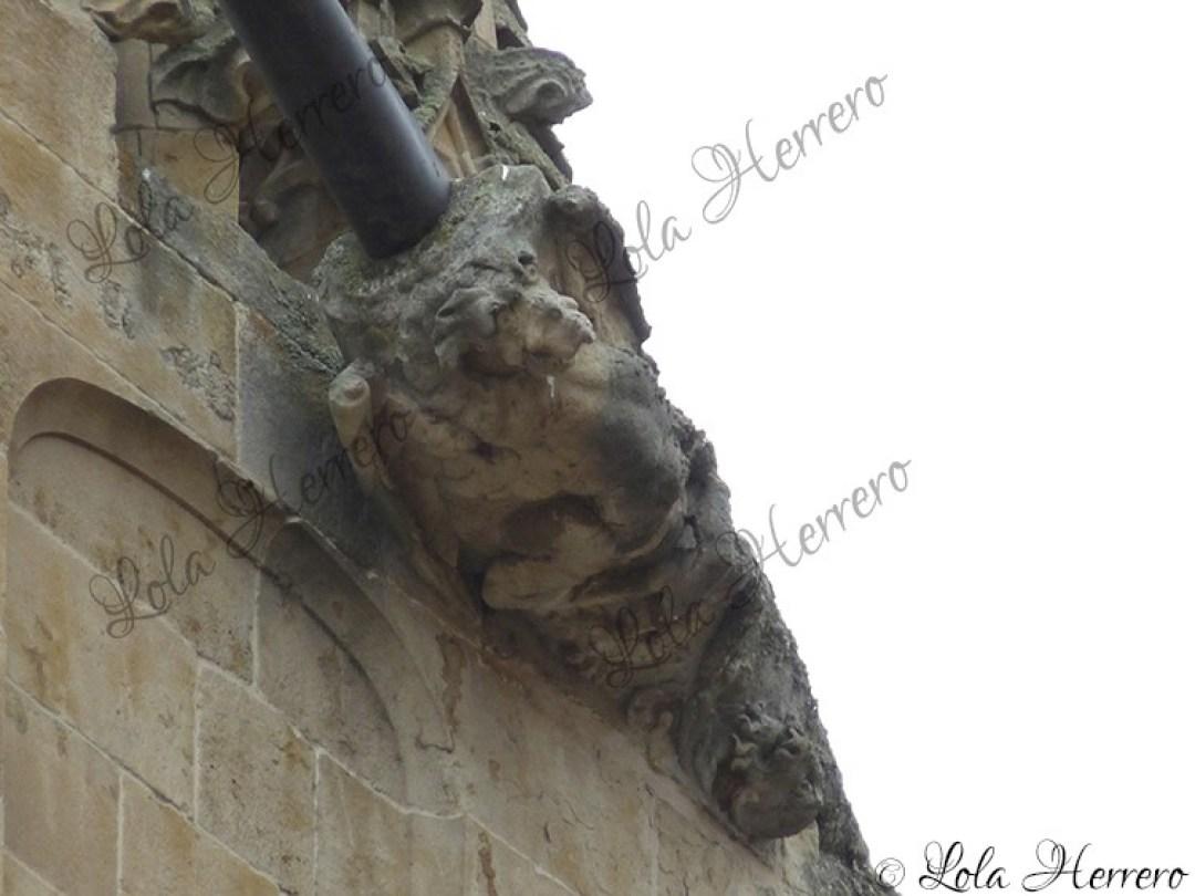 Gárgola Catedral Salamanca (380)