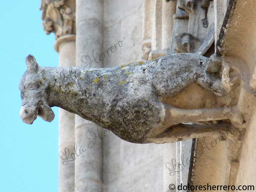 Unusual Animals in Gargoyle Imagery I