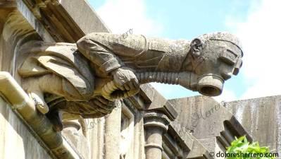 Gárgola de la Catedral de María Inmaculada (Vitoria-Gasteiz)