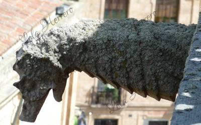 Unusual Animals in Gargoyle Imagery II