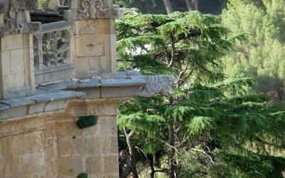 Singularidad y belleza artística. El imaginario de las gárgolas de la Catedral de Segovia