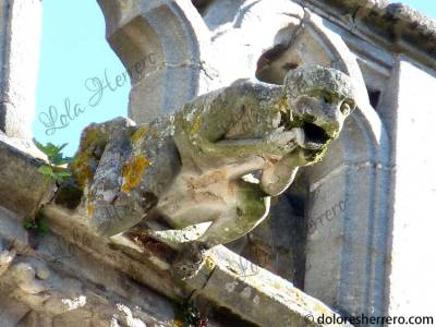 Gárgola de la Catedral de St. Étienne de Cahors (Francia)
