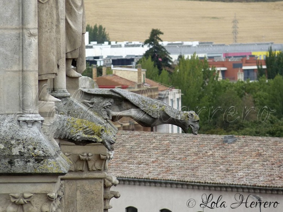 Gárgolas Catedral Burgos 170