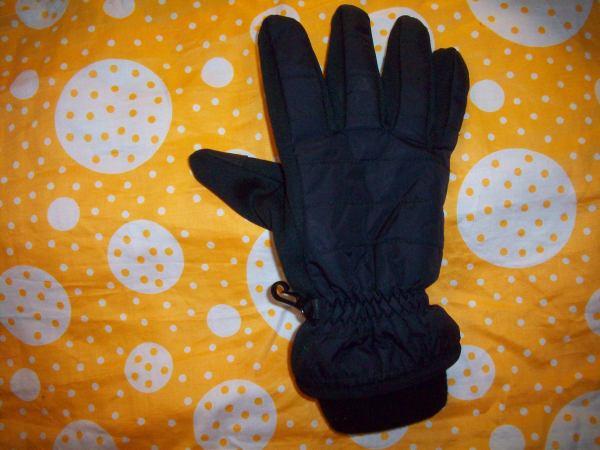 Перчатка Данина