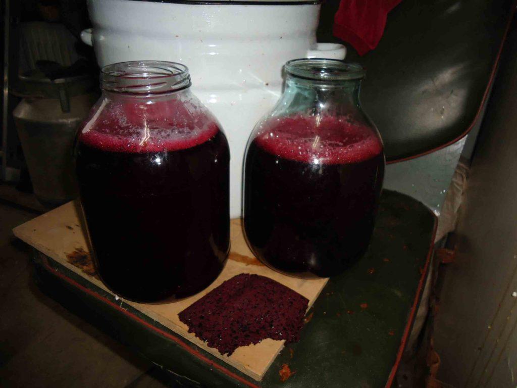 Вино из красного винограда в домашних условиях простой рецепт фото