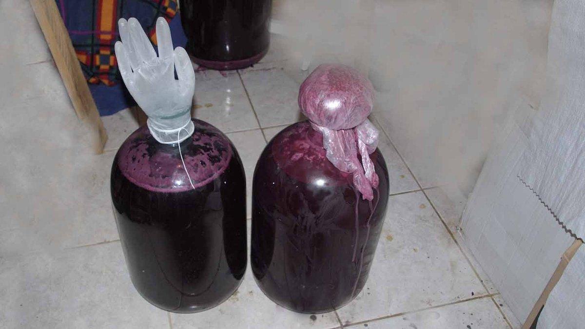 Домашнее сухое вино из винограда — как сделать сухое вино из винограда в домашних условиях простой рецепт фото