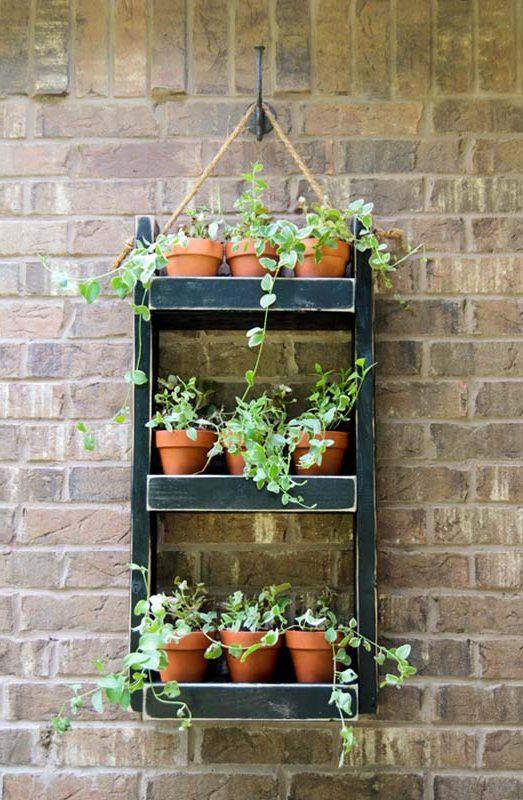 Полки на стену для цветов: деревянные и стеклянные ...