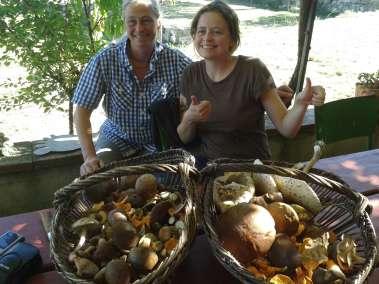 Photos - Cueillette de champignon au Viala