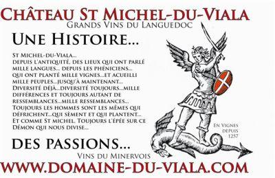 Photos - Château St Michel du Viala