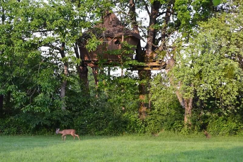 Domaine-des-Vaulx-Cabane-des-Cartes-nature