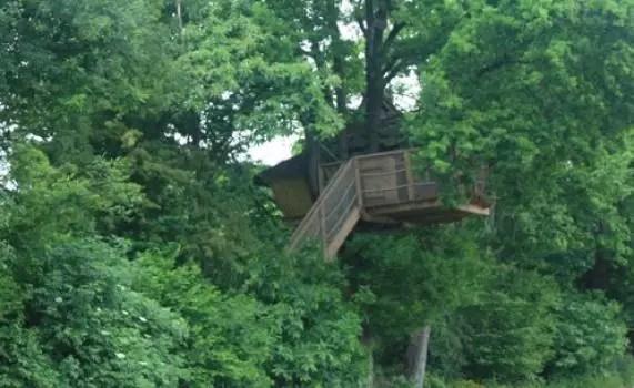 cabane-dans-les-arbres-des-cartes-vue