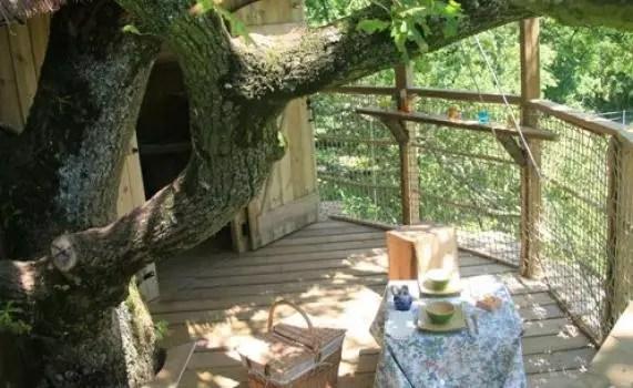 cabane-dans-les-arbres-girsberg-terrasse
