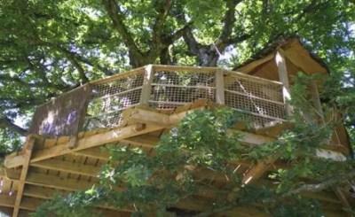 cabane-dans-les-arbres-girsberg