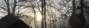 Lov nid dans le petit matin